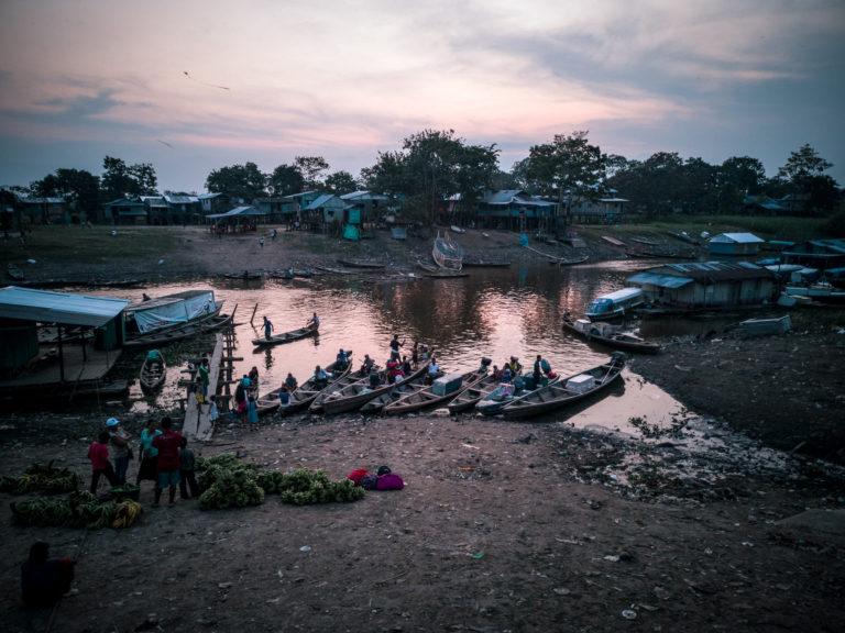 Amazonasufer Leticia